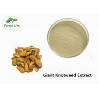 Buy cheap Medcine Ingredients Giant Knotweed Extract with 90% Polydatin White Powder product