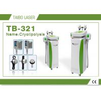 China 5 or 2  Heads 10.4 Screen Cryolipolysis Slimming Machine for Body Fat Removal wholesale