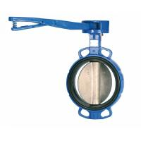 Buy cheap Custom Ductile Cast Iron Lug And Wafer Type Butterfly Valve DN40 - DN600 product