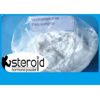 Buy cheap Hight Quality Testosterone Anabolic Powder Steroid Testosterone Propionate 57-85-2 For Muscle Growth. product