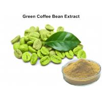 China Natural Plant Extract Powder 45% Chlorogenic Acid 100 Pure Green Coffee Bean Extract Caffeine Capsules on sale