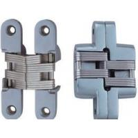 Invisible & Concealed Hinge