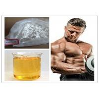Quality CAS NO. 62-90-8 Nandrolone Steroid Nandrolone phenylpropionate NPP for sale