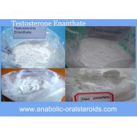 Quality 315-37-7 Anabolic Steroid Powder Testosterone Enanthate / Test E For Muscle Increase for sale