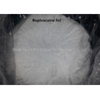Buy cheap Effective Medical Powder Bupivacaine / Bupivacaine HCl with Longer Duration 2180-92-9 from wholesalers