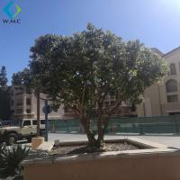 Buy cheap Green Plastic Olive Tree Large Size For Garden Customized Design product
