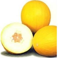 Buy cheap Fresh Melons product