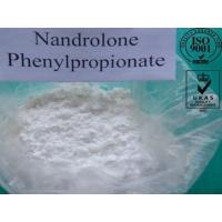Buy cheap Npp Durabolin Nandrolone Phenylpropionate powder for Bodybuilder Supplement CAS434-22-0 product