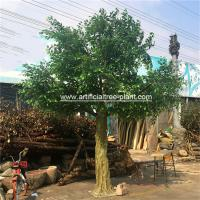 Buy cheap Large Fiberglass Material Artificial Ficus Tree Faux Banyan Plant For Outdoor Decoration product
