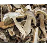 China Boletus Edulis sliced on sale