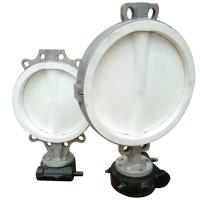 Stainless steel lined Teflon butterfly valve