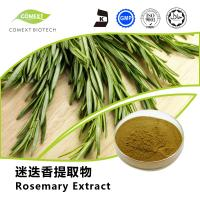 Quality Hot Sale Rosemary Leaf Extract Carnosic Acid 5%~80% HPLC Testing for sale