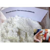 Buy cheap Nandrolone Decanoate White Powder , DECA Durabolin CAS 60-70-3 for Muscle Building product