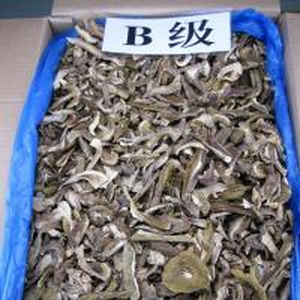Buy cheap Factory Price Sliced Dried Boletus Edulis  B Grade product