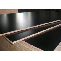Buy cheap Black Color Phenolic Film Faced Plywood 12mm - 18mm Thickness Environmental Friendly product