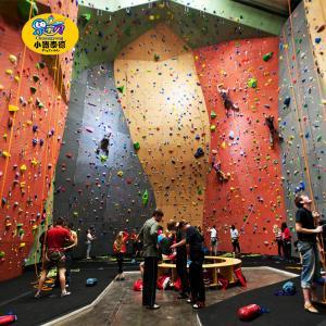 Outdoor Adult / Kids Rock Climbing Wall High Strength Frame Non - Toxic