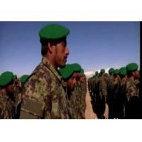 Buy cheap Professional Army Digital Uniforms product