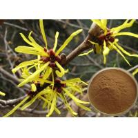 Buy cheap Antipruritic Tannin Hamamelis Virginiana Extract , Witch Hazel Extract For Hair Color Protection product