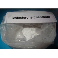 Buy cheap Safe Anabolic Legal Steroids CAS 315-37-7 Testosterone Enanthate Injectable Steroids product