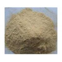 China Sophora Root Extract,Sophora Root Extract Factory,Sophora Root Extract Supplier,Sophora Root Powder on sale