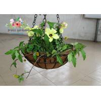 Buy cheap Wall Decor Indoor Hanging Flower Baskets , Round Hanging Plant Holders from wholesalers