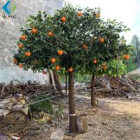 Buy cheap Restaurant Decoration Artificial Fruit Tree , Artificial Orange Tree With Silk Fabric Leaf product
