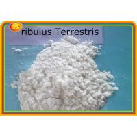 Buy cheap Tribulus Terrestris Powdered Extract Male Sex Hormone 55056-80-9 99% For Lower Blood Pressure product