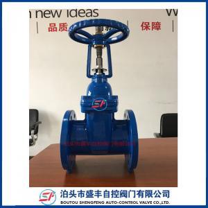 China ductile iron rising stem flanged gate valve on sale