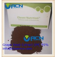 Buy cheap ACNS00199 Grape Seed Extract OPC 95% /Polyphenols 85% | A Clover Nutrition Inc | resveratrol naturals product