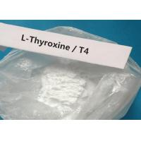 Buy cheap CAS 51-48-9 Oral Injectable Anabolic Steroid White Powder T4 / L-Thyroxine For treating hypothyroidism product