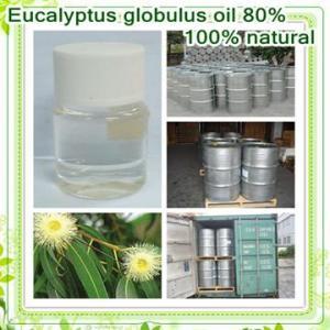 minuto natural de la esencia de eucalipto el 80%