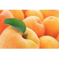 Buy cheap Fresh Apricots product