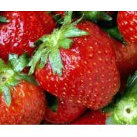 Buy cheap Fresh Berries product