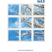 China Largest sky Ceilings,Ceiling art and panoramic Wall murals in the world  Virtual Sky-LED panels wholesale