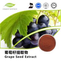 Quality Hot Sale Grape Seed Extract 95% OPC Red Brown Powder UV Testing for sale