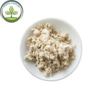Buy cheap avocado powder buy  best dried avocado powder health benefits supplement products drink dosage pills product