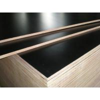 Buy cheap hot sale low price good quality 9mm 11mm 12mm 15mm 18mm film faced plywood in Africa product