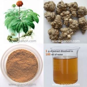 Quality 100% Natural Panax notoginseng polysaccharides for sale
