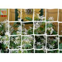 HDPE Garden Climbing Plant Support Netting , Garden Plastic Mesh Fencing