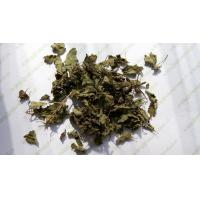 Buy cheap Rabdosia rubescens leaves Tea Herba Rabdosiae dried well good for throat release pain Dong ling cao product
