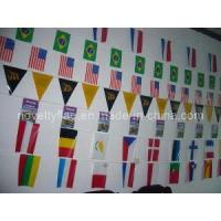 China Bunting Flags, PE Flags, Mini National Flag wholesale