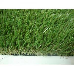 装飾的な草