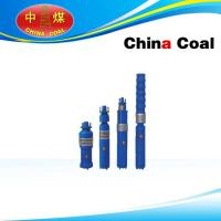 China Portable water Pumps with Wet-Type submersible motor on sale
