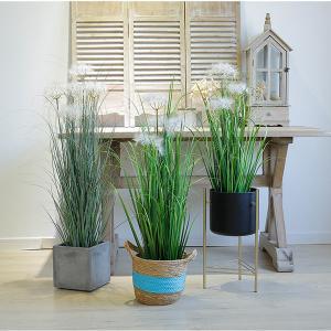 Buy cheap Durable Artificial Bonsai Tree Plush Fiber Silk Fabric Aloe Dog Tail Onion Grass / Plastic Flower Pot product