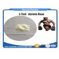 Buy cheap Testosterone Powder  1-Testosterone Base CAS 65-06-5 Bodybuilding Steroids product