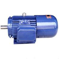China Blue Asynchronous Electric High Torque Motor 5.5kw Spindle Neo Motor Trifasico on sale