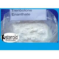 Buy cheap Steroid Hormone Powder Trenbolone Enanthate 10161-33-8 Injection 200mg No Side Effect product