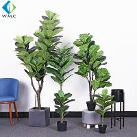 Buy cheap Green Artificial Ficus Plant , Ficus Lyrata Plant For Home Decoration R020002 product