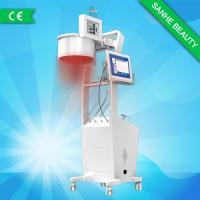 China 2015 New professional beauty salon laser hair regrowth machine wholesale