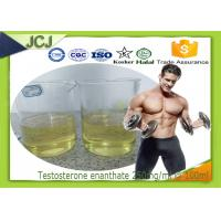 Quality Testosterone Enanthate Anabolic Steroids for Muscle Building 250mg / ml * 100ml for sale